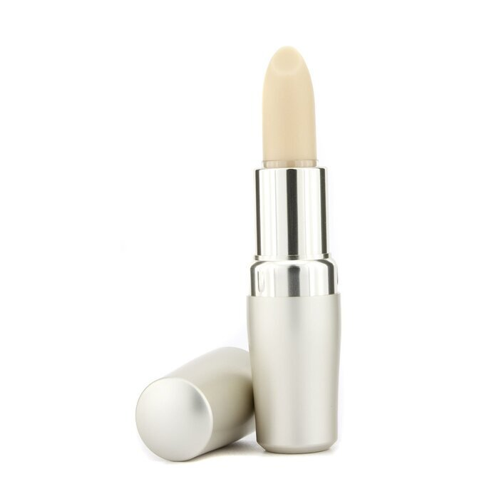 The Skincare Protective Lip Conditioner SPF10 4g - Product Image