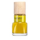 Kanon Eau De Toilette Spray 100ml/3.3oz
