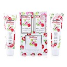 Cath Kidston Rose Bath Set: Shower Gel 75ml + Body Cream 75ml 2pcs