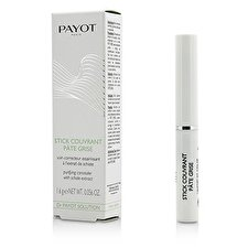 Payot Dr. Payot-Lösungs-Stock-Abdeckungs-Paste Grey Purifying Concealer 1.6g/0.056oz