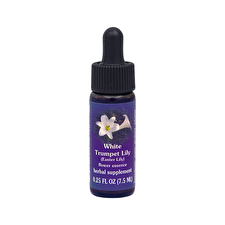 FES Quintessentials Easter Lily 7.5ml