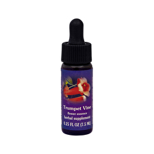 FES Quintessentials Trumpet Vine 7.5ml